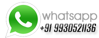 whatsapp of website designer, web designer whats app