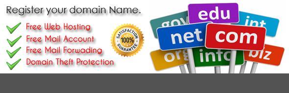 Cheap Domain Name | Domain Name With Web Hosting Server, Mumbai ...